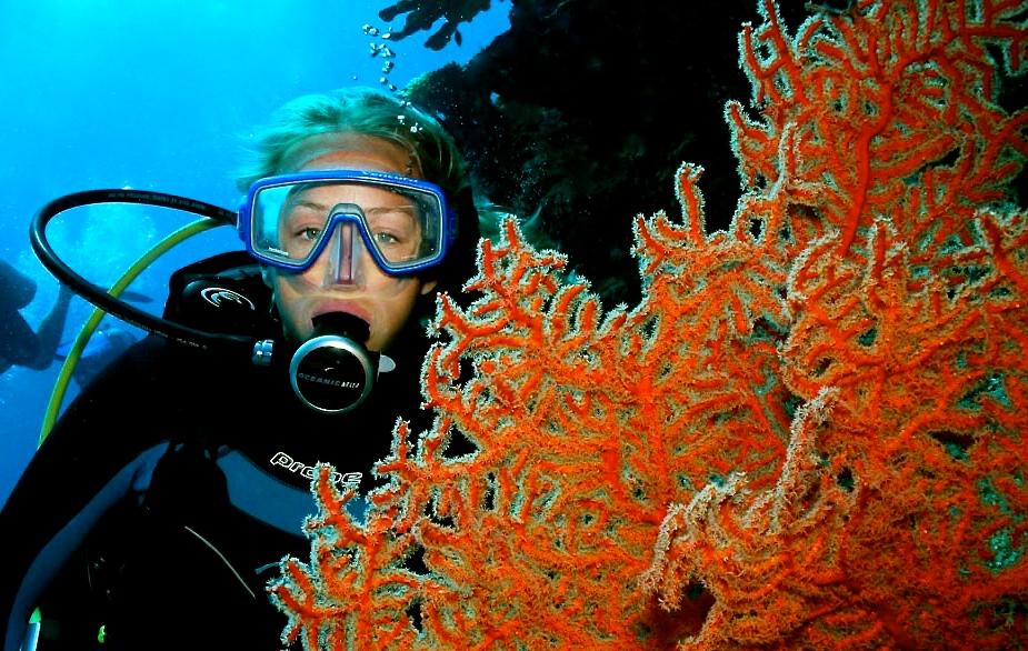 Intro Diving Port Douglas
