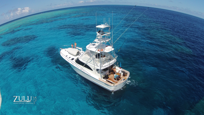 Blue Dive luxury private charters