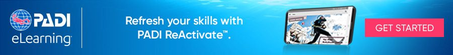 PADI Scuba Diving Reactivate