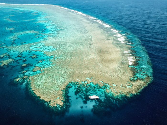 Scuba Diving PADI Port Douglas